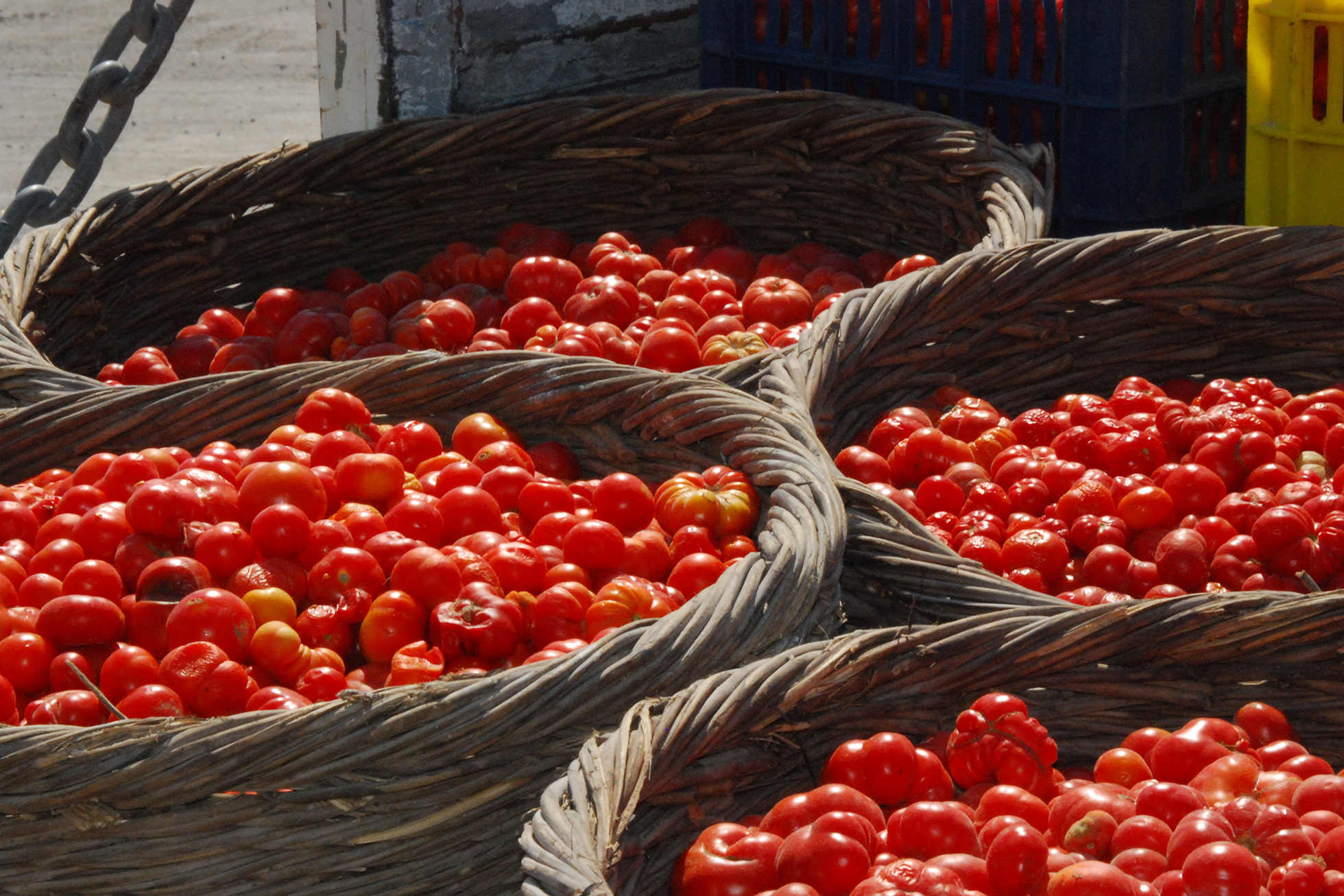 Santorini with Children: Tomato Industrial Museum